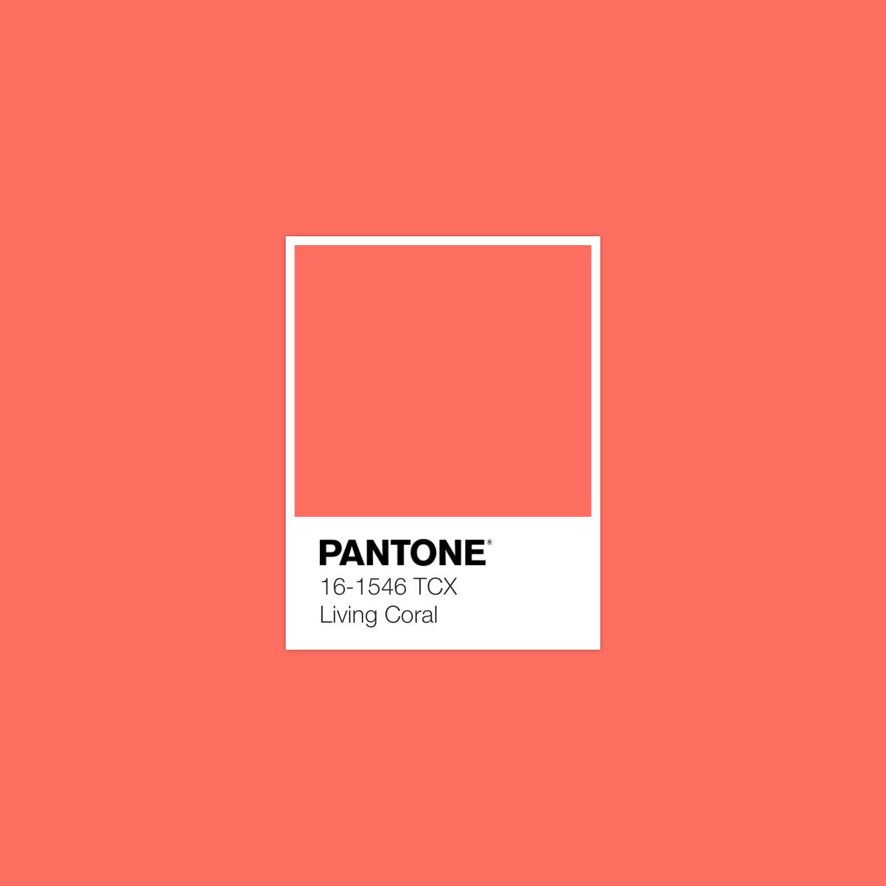 Brand Public Pantone 2019